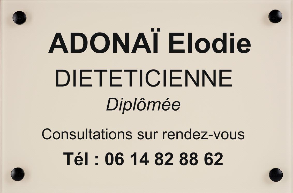 plaque dieteticienne ivoire, gravure et cabochons noir